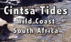 Cintsa Tides